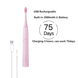 Wholesale USB Rechargeable Electric Toothbrush Waterproof Sonic Toothbrush Adult Toothbrush Oral Care Dady Working Time Type Clean Models Pink