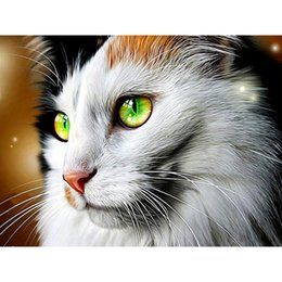 painting green Australia - Cute cat with green eyes square diamond diamond embroidery painting