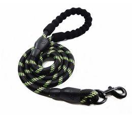 Long rope dog Leads online shopping - Nylon Reflective Dog Leash Pet Training Leashes Safety M M Long Mountain Climbing Rope Dog Lead For Medium Large Dogs