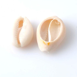 Pear shaPe earrings online shopping - Shell Conch Beads Material Ornaments Manual Originality Women Jewelry Bracelet Necklace Earring Arts And Crafts Famale Gifts dy ff