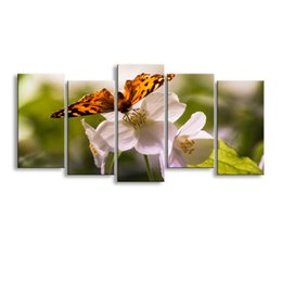 $enCountryForm.capitalKeyWord Australia - 5 pieces high-definition print butterfly canvas painting poster and wall art living room picture B-085
