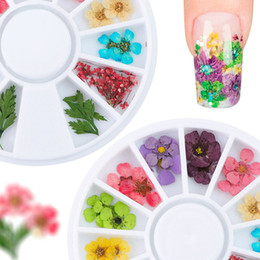 $enCountryForm.capitalKeyWord NZ - Natural Real Dry Dried Flower Leaves 3D Pressed Blossom Leaf UV Gel Acrylic False Tips Nail Art DIY Tools