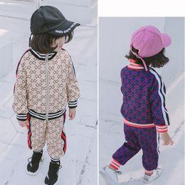 e194f0a729732 2 pièces ensembles Fille De L Inde Motif Costume Coréen Nouveau Motif  Automne Bébé Pull À Glissière Pull Pantalon Twinset enfants vêtements  vêtements pour ...