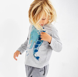 $enCountryForm.capitalKeyWord Canada - Baby Boys Sweater kids boy Long Sleeve T-shirt Tops clothes cotton pullover Dinosaur Autumn Children Clothing