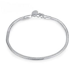 $enCountryForm.capitalKeyWord Canada - Charm Bracel for Women Wholesale! Free Shipping Wholesale bracelet,hot solid silver plated fashion jewelry Flat Snake Bone Bracelet & Bangle