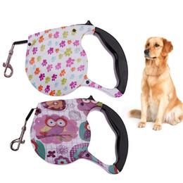 Venta al por mayor de para 5m Collar para perro Cuerda de tracción retráctil automática Cachorro flexible Correa de plomo para perros Accesorios