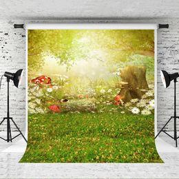 Fantasy Backdrops Australia - Dream 5x7ft Fantasy Forest Backdrop Children Theme Birthday Photo Background for Photographer Shoot Red Mushroom Backdrop Studio Prop