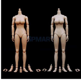 female action figures 2019 - 1:6 Scale Female Girl Nude Body Large Bust 12'' Action Figure Toy with Etrax Hands & Feet Body Parts for Phice
