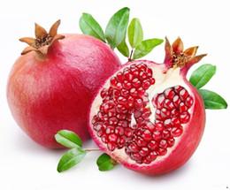 30 шт бонсай гранат семена очень сладкий вкусные фрукты семена,суккуленты семена мини дерево бонсай для дома подарок