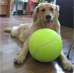 $enCountryForm.capitalKeyWord NZ - 24CM Giant Tennis Ball For Pet Chew Toy Big Inflatable Ball Signature Mega Jumbo Pet Toy Ball Supplies Outdoor Cricket
