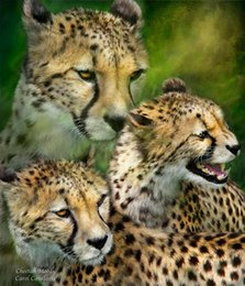 Giclee Print Canvas Paintings Australia - Giclee Cheetah-moods-carol Print painting arts and canvas wall decoration art Oil Painting No Wrap-Rolled In A Tube