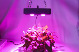 $enCountryForm.capitalKeyWord NZ - WY New 2019 Hot Sale Led Grow Light COB 100W Full Spectrum Grow Light with Competitive Price