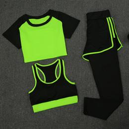 $enCountryForm.capitalKeyWord Canada - New Women Yoga Sport Suit Summer Bra Set 3 Piece Female Short-sleeved Pants Outdoor Quick Drying Sportswear Running Clothes