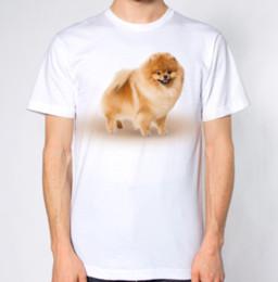 Pomeranian Dog T-Shirt Cartoon t shirt men Unisex New Fashion tshirt Loose  Size top ajax 2018 funny t shirts 100% Cotton Tee Tops c58f6a303e4c
