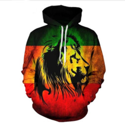 funny sweatshirts hoodies UK - 2018 New Fashion Couples Men Women Unisex HD Lion Funny 3D Print Hoodies Sweater Sweatshirt Jacket Pullover Tops CLM011