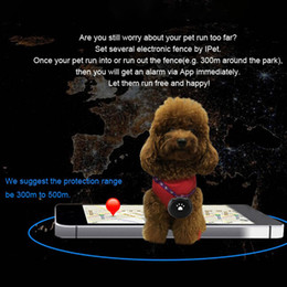 Discount dog collar tracker - Tractive 3G MiNi Pet GPS AGPS LBS Tracking Tracker Collar For Dog Cat AGPS LBS SMS Positioning Geo-Fence Track Device