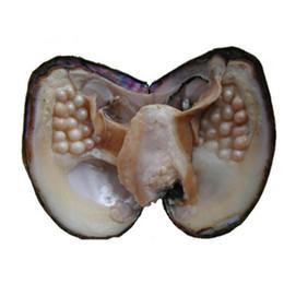 $enCountryForm.capitalKeyWord UK - 2018 New Wholesale About 22-30 pcs natural Freshwater Whole Pearls Oyster,Big Freshwater pearl vacuum packaging Whole Oyster Shells