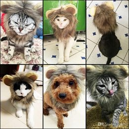 Discount summer costumes for dogs - Funny Wool Pet Plush Hat Cute Dog Cat Costume Wig For Halloween Dress Up Lion Headgear Cartoon Design Animal Wigs 12 5jn