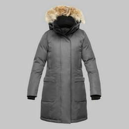 $enCountryForm.capitalKeyWord UK - Gray Women Long Coat Top Quality 100% Down Jacket Real Raccoon Fur Collar Hood Canadian Ladies Windbreaker Plus Size Anorak