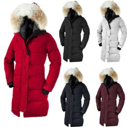 Chinese  Women Fashion Overcoat Goose Shelburne Parka Winter Coat Goose Down Feather Jacket Coyote Fur Collar for Lady Goose Down Jacket for Women manufacturers
