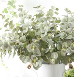 Ingrosso 5pcs seta australiana Australia rami di albero di eucalipto cadono a casa decorazione di nozze fiori finti piante disposizione corona di foglie