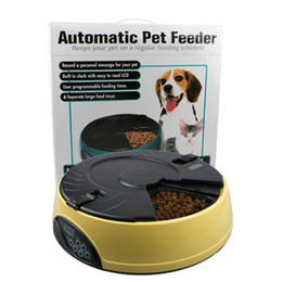 Wholesale 3Colors Automatic Pet Feeder Meal LCD Digital Automatic Pet Dog Cat Feeder Recorder Bowl Meal Dispenser Set feeding times
