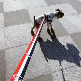 Collier de chien Clignotants Harnais Laisses pour animaux de compagnie Marée de mode Marque Teddy Schnauzer Pet Cat Gilet ajustable