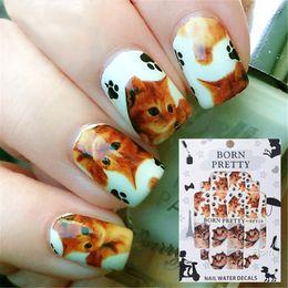 Discount claws sticker - 2 Patterns Sheet BORN PRETTY Cute Cat Claw Nail Art Water Decals Transfer Sticker BPY19