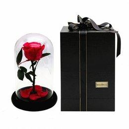 Маленький принц стеклянная крышка свежий сохранившийся цветок розы импорт RoseAMor бессмертные красочные розы для девушки День Святого Валентина свадьба лучший подарок