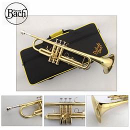 Venta al por mayor de Trompeta Bach TR600 color oro pequeños instrumentos musicales estudiante de primaria principiantes trompeta