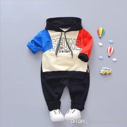 Autumn Cotton Australia - TR06 Spring Autumn Baby Boys Girls Clothes Sets Children Waer Cotton Hooded T Shirt+Pants 2pcs Casual Infant Kids Suits For 0-4Y