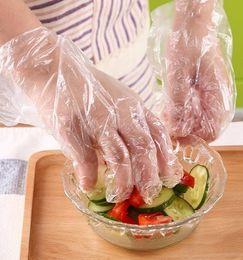 Chiaro plastica guanti monouso per cucina del ristorante BBQ ecologico Frutta Verdure monouso da tavola di 500pcs in Offerta
