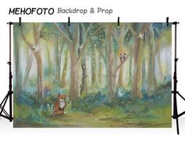 MEHOFOTO Aniversário Pano De Fundo Fotografia Rústico Óleo Animais Da Floresta Tema Da Selva Fox Crianças Fundo Personalizar Photocall em Promoção