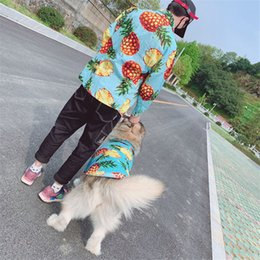 design female shirts Australia - Spring Summer Holiday Pet Shirt with Pineapple Print Personality Pet Apparel for Teddy Schnauzer Cat with Unique Design