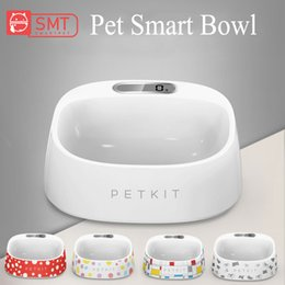 $enCountryForm.capitalKeyWord Australia - SMARTPET Smart Pet Cat Weighing Bowl Accurate Weighing Eating Drinking Bowl Scientific Feeding Safe Anti-microbial Pet Product