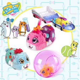 Battery Operated Animal Toys NZ - Original edition Wekids ZhuZhu PEt Imported Children's Toy Railway Vehicle for Emulated Animal Electronic Pet Electric Vehicle