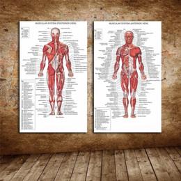 Human Oil Painting Australia - Comics Superheros,Human Anatomy Muscle Diagram,2 Pieces Home Decor HD Printed Modern Art Painting on Canvas (Unframed Framed)