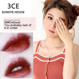 3ce Wholesale Lipstick Australia - 3CE EUNHYE HOUSE Matte Lipstick Popular 10 Colors Lip Makeup Tools Red Oxblood Chill Warm Taupe