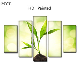 $enCountryForm.capitalKeyWord Australia - Unique gift High Quality HD Printed 5 Pieces big size Canvas green small grass photo under the sun Wall Art pictures for room Home Decor