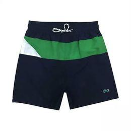 Vente en gros Vente en gros-été hommes pantalons courts vêtements maillots de bain shorts de plage en nylon hommes petits chevaux maillot de bain shorts de bord 2018.