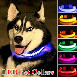 $enCountryForm.capitalKeyWord NZ - LED Dog Collars Safety Adjustable Nylon Pet Collar with Nylon Webbing Perfect for Small Medium Large Dogs Collars Pet Supplies Wholesale