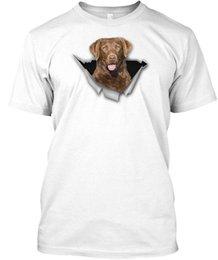 $enCountryForm.capitalKeyWord UK - Chesapeake Bay Retriever Mb Wholesale Cool Casual Sleeves Cotton T-Shirt Fashion New T Shirts Unisex Funny Tops Tee Tagless Tee T-Shirt