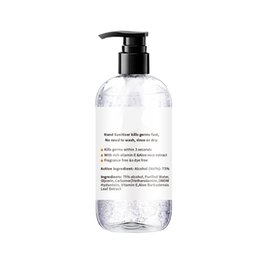Wholesale free shipping Hand Sanitizer With Vitamin E 300ml Wash Free for Home Office In Stock