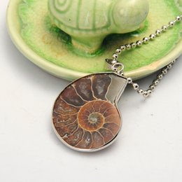 ammonite pendants NZ - Natural Stone Ammonite Fossils Seashell Snail Pendants Ocean Reliquiae Conch Animal Necklaces Statement Men Jewellery