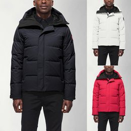 Men cotton vests online shopping - 2020 Winter Mens Down Parkas Hoody Canada Wolf Fur Bear Jackets Zippers Designer Warm Vests Coat Outdoor Luxury Parka north doudoune homme