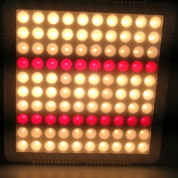Led Grow Lights NZ | Buy New Led Grow Lights Online from Best