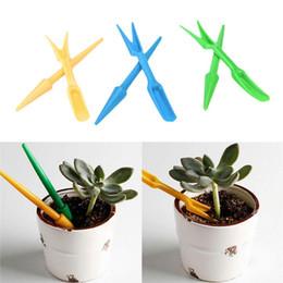 $enCountryForm.capitalKeyWord Australia - Fashion New 2Pcs Succulents Shift Digging Planting Weeding Mini DIY Garden Tools Device Fashion New 2Pcs Succulents Shift Digging
