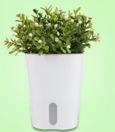 Fiber Pots Australia - Creative automatic absorbent plastic lazy flowerpot Cotton rope suction basin Green carrot imitation ceramic green planting large flowerpot