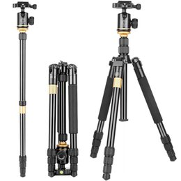 Monopod For Dslr Camera NZ - Professional Photographic Camera Tripod Portable Aluminium Alloy Tripod Kit Monopod Stand Ball head For Travel DSLR Camera Tripod