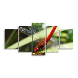 Art Canvas Prints Australia - 5 pieces high-definition print dragonfly canvas painting poster and wall art living room picture QIT5-013